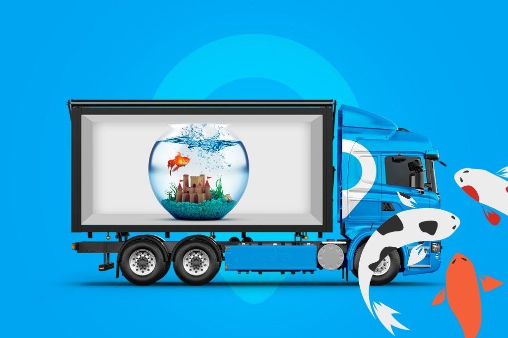 перевозка аквариумов