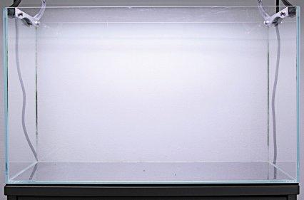 iwagumi-aquarium-set-up4