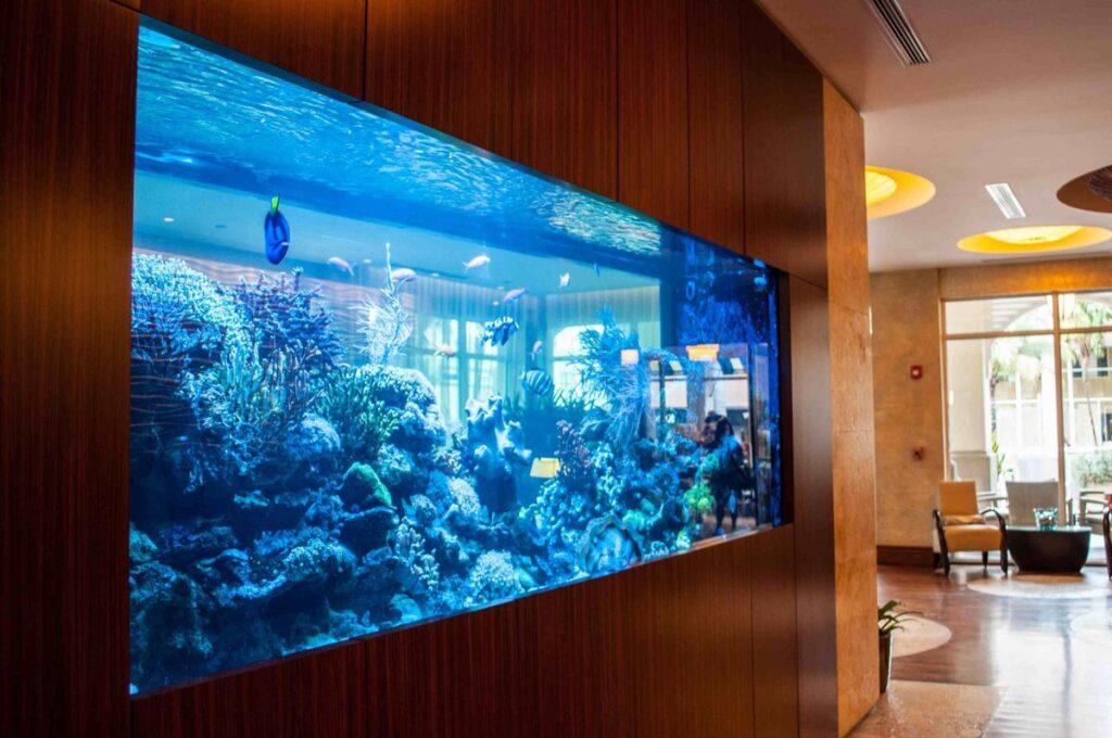 аквариум 1000 л в стене