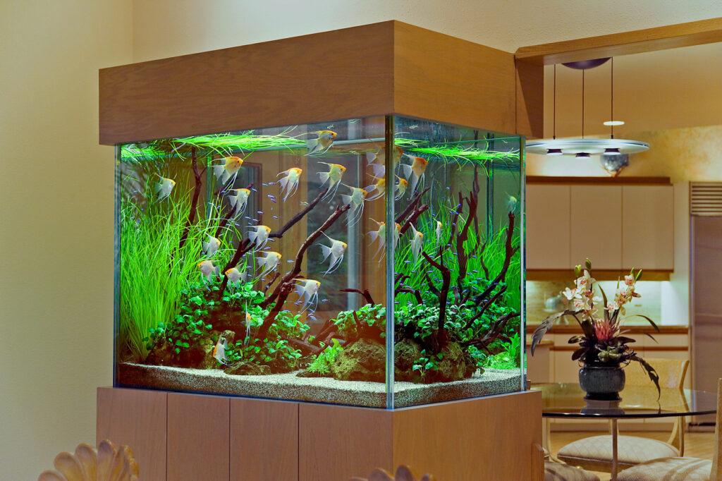 аквариум 300 л с тумбой