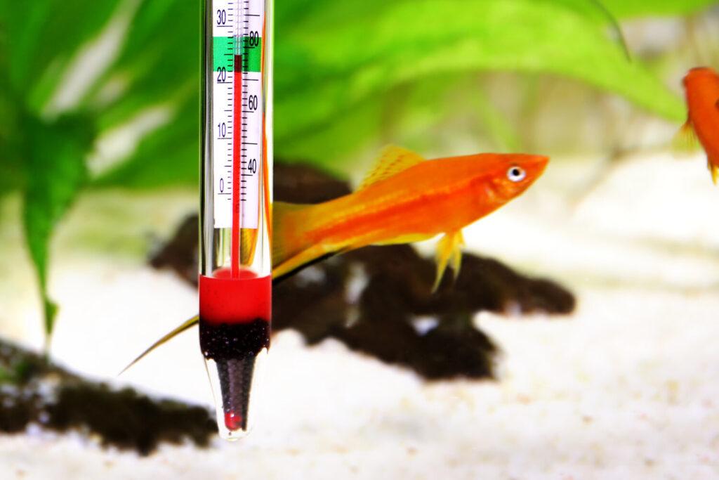 нагреватель для аквариумов