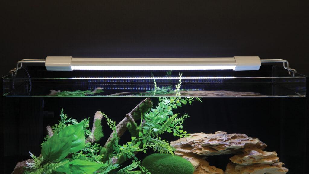 подсветка в аквариуме